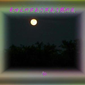 『 老ゆえの目あり耳あり寒の月 』フォトTAO575zqk0603