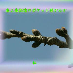 『 この生は銀河の愛の贈り物 』言葉あそび575交心xzs1701