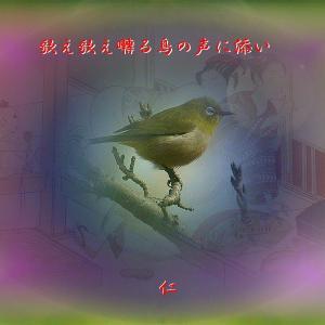 フォト575あそび『 歌え歌え囀る鳥の声に添い 』vzr1602