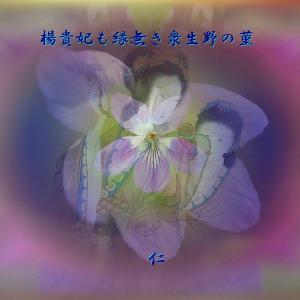 フォト575あそび『 楊貴妃も縁なき衆生野の菫 』ywx1402