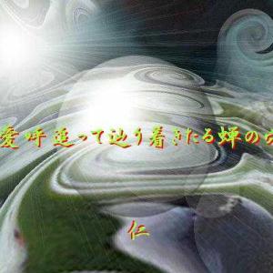 『 愛呼追って辿り着きたる蝉の穴 』瘋癲老仁妄詩012-01zrr2901