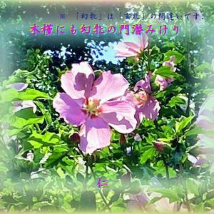『 木槿にも玄牝の門潜みけり 』良寛さんとあそぶxyp2101