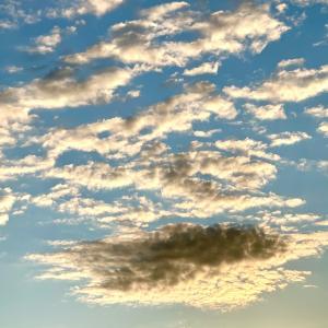 もーこの際大変な事楽しんじゃおうそう決めた今朝の空綺麗すぎてもう、前しか見れな...