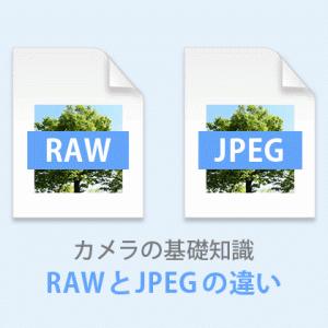 【RAWとJPEGの違い】選び方はこのポイントで決めよう!