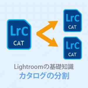 Lightroom Classic【カタログの分割と結合】PCの負担を軽くしよう