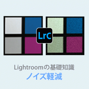 Lightroom 高感度写真の【ノイズ軽減・除去】デメリットも解説