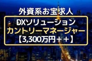 ◆3,300万円◆外資カントリーマネージャー@DXソリューション