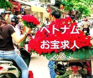 ベトナムお宝求人(01)ホーチミン・ハノイ・ダナンの厳選求人【2019年7月】