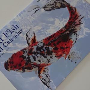 2021年 金魚カレンダー