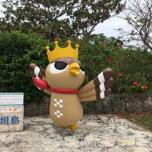 八重山の森の王者 ぱいーぐる 石垣島にて