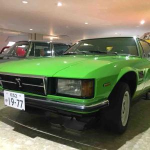 大好き 緑色がイイ(*´-`) デトマソ・ロンシャン