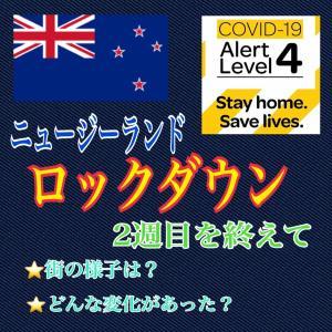 【ロックダウン】ニュージーランド 新型コロナウイルスパンデミックによるロックダウン生活2週目(4/2〜4/8)を終えて
