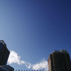 迎えに行った日は青空がきれいだったよ【養親さんからのメッセージ②】