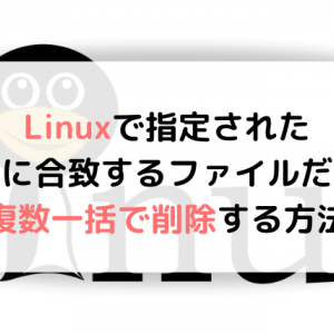 Linuxで指定された条件に合致するファイルだけを複数一括で削除する方法