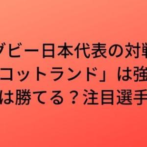 ラグビー日本代表の対戦国「スコットランド」は強い?日本は勝てる?注目選手は?