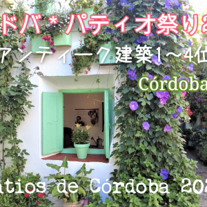 コルドバのパティオ祭り2021入賞パティオ(アンティーク建築)を紹介 -Fiesta de los Patios de Córdoba2021-