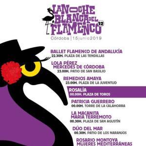 朝までフラメンコが楽しめるイベント -La Noche Blanca del Flamenco-