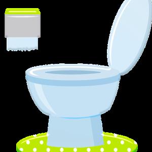 アメリカで自宅トイレにTOTOウォシュレット(温水洗浄便座)を自分で取付け。意外と簡単にできるDIY方法を写真付きで解説!