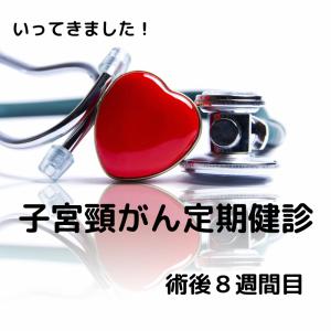 子宮全摘 術後8週間目 定期健診【子宮頸がん】