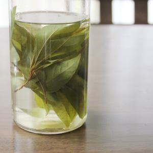 クロモジ茶が美味しい