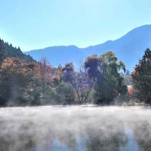 【大分旅行⑥】由布院散策~金鱗湖の朝霧に感動!& 湯の坪街道で食べ歩き