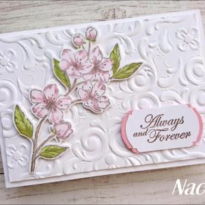 桜がメインの新製品を使って