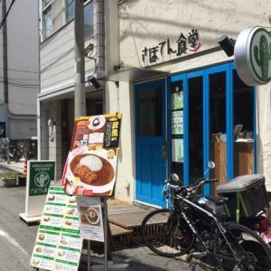 【さぼてん食堂 大阪市西区】スパイスの効いた欧風カレーが辛ウマ!