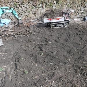 菜園拡張作業の継続、牛糞堆肥の入荷~♪