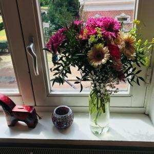 花を愛でる、花に癒される@オランダ