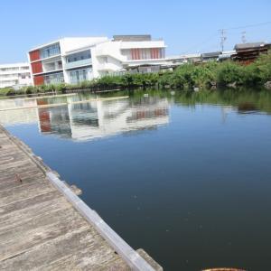 100均スーパーフラット釣座 in   佐屋川温泉前(9/25)