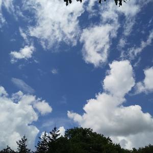 エンゼルフォレスト那須白河【我が家に待ち受ける雨キャンプの悲劇】