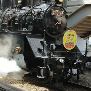 SLもおか号に乗る!【蒸気機関車とSLキューロク館】