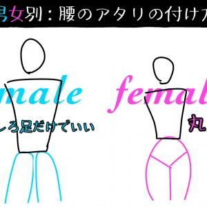 描き方メモ 【男女でこんなに違う!腰(及び尻)のアタリの付け方】