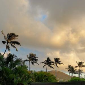 ハワイは「失業回復が最悪の州」