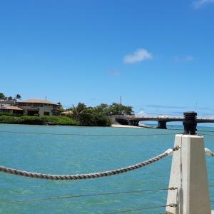 観光客がずいぶん戻ってきたハワイ、もうすぐ元通り?