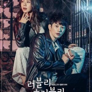 韓国ドラマ『ラブリー・ホラブリー』の感想。パク・シフがとにかくかっこいい!