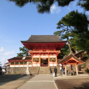 ~ネイチャーガイドのお仕事~【イベント】日御碕神社で樹木を巡る参拝