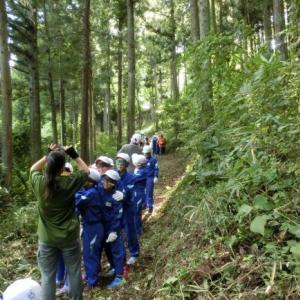 ~ネイチャーガイドのお仕事~【出前授業】目を使わずに森の中を歩く
