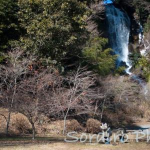 白糸の滝から車で5分にある「朝日瀧」は、静岡観光の穴場スポット。
