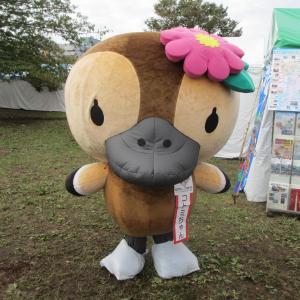 江東区民祭り♪