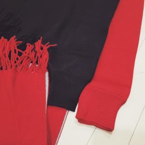 着物にも使える羽織風ストール買いました