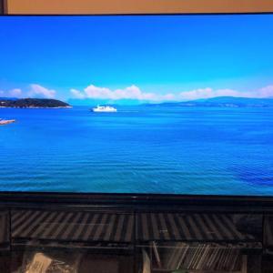 フラッグシップモデルのテレビはやっぱり綺麗ですね!!