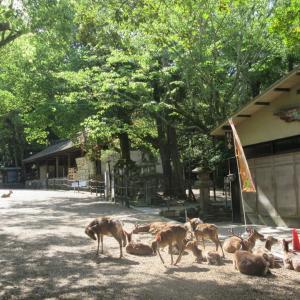 山辺道・北(奈良駅⇒天理駅)・その2