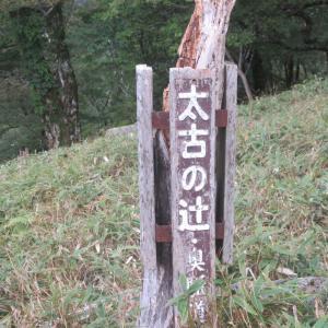 北・大峯奥駈道!(3) 太古の辻〜深仙宿