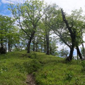 大峯奥駈道:釈迦ヶ岳でソロキャンプ(1)