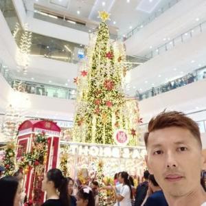 どこのクリスマスツリーが綺麗なの?
