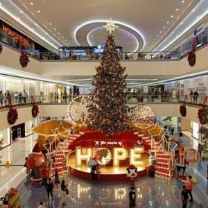 MOAのクリスマスツリーが完成