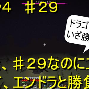エイクラ4 ♯29 なんと、♯29なのにエンドへ行って、エンドラと勝負!?