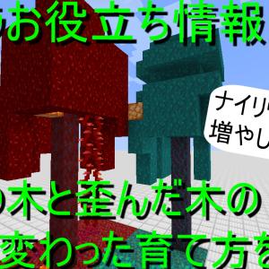 マイクラお役立ち情報! 真紅の木と歪んだ木のちょっと変わった育て方を解説!