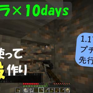 プチクラ×10days スナップショットの世界を探索!【岩を使って神殿作り!】